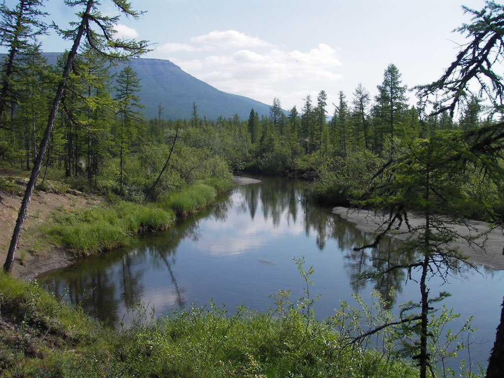 Russia. Lake Vivi is the geographical center of Russia