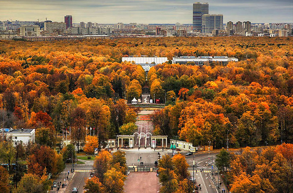 things ot od in moscow - sokolniki park