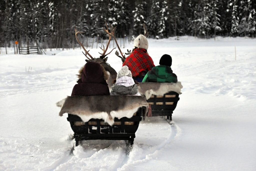 Go for reindeer ride in Lapland.